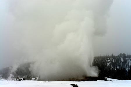 geothermal: Old Faithful Geothermal geyser in winter Yellowstone National Park