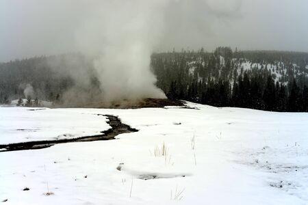 faithful: Old Faithful Geothermal geyser in winter Yellowstone National Park