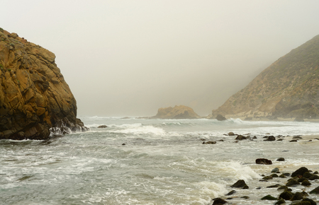 settler: Foggy day at Julia Pfeiffer state park California