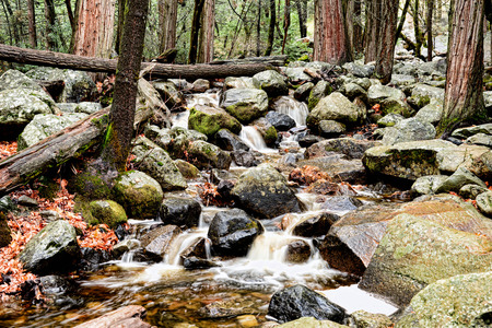 Fast moving mountain stream from snow melt in spring