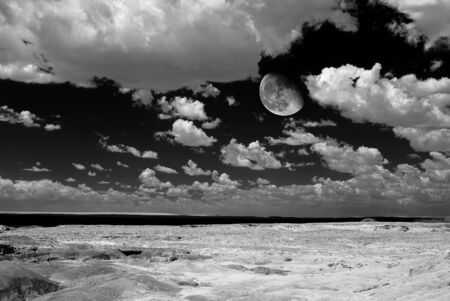 Moon over Scenic landscape of the ancient petrified forest in Arizona