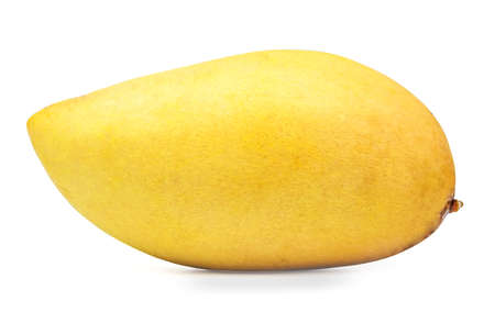 mango isolated on a white background.