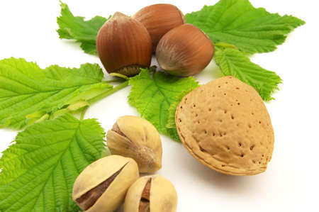 Tasty nuts photo
