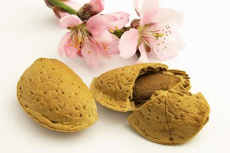 amaretto: Almond