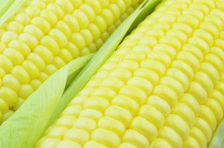 fare: Sweet corn