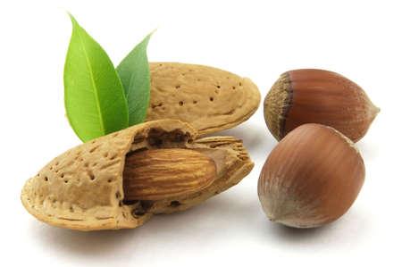 filbert: Almonds with filbert