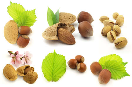 Nuts with leaves photo