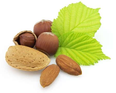 filbert: Filbert and almonds Stock Photo