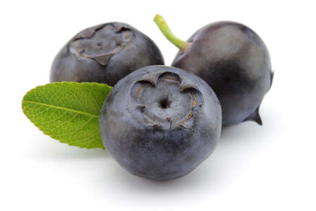 bilberries: Blueberry with leaves
