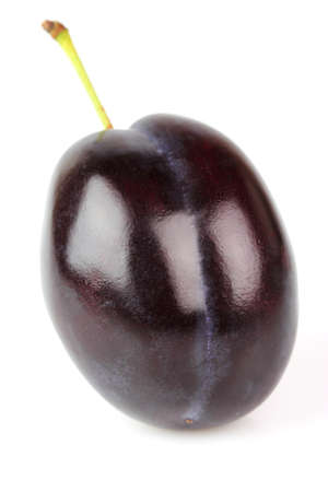 One plum on a white background photo