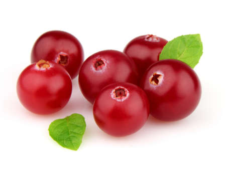 Ripe cranberry with leaves of mint