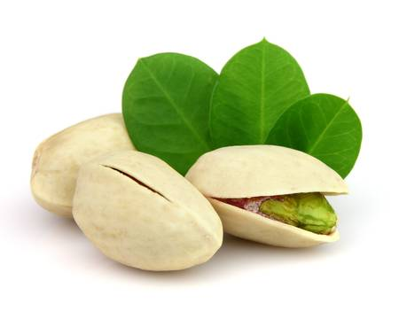 hard core: Pistachio with leaves