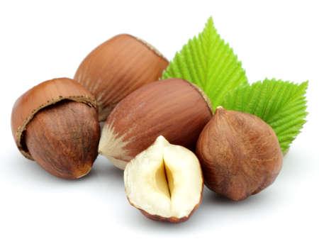 Getrocknete Filbert mit Blättern Standard-Bild