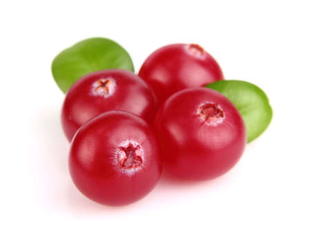 Berries of cranberry wuth leaves Stock Photo - 11743516