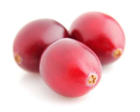 Cranberries in closeup Stock Photo - 11967535