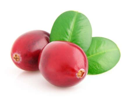 cranberry: Ripe cranberry in closeup Stock Photo