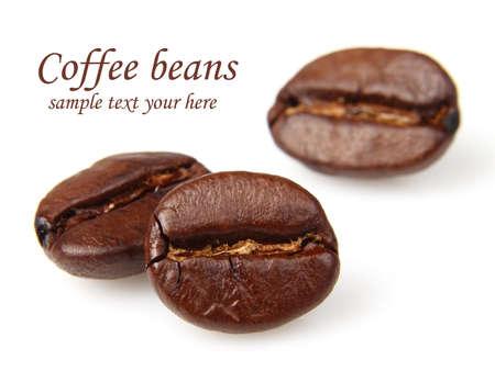 beverage in bean: Coffee beans in closeup