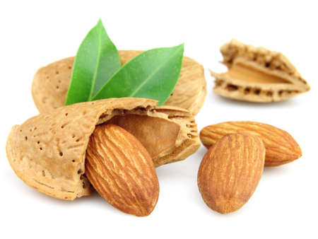 Almonds and kernels with leaves photo