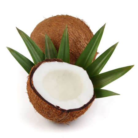 cocos: Cocos with leaves