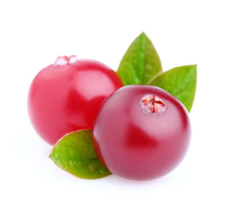Cranberry on a white background photo