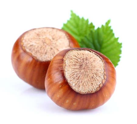filbert: Filbert with leaf Stock Photo