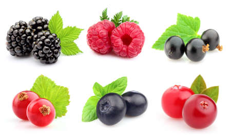 currants: Ripe berries in closeup Stock Photo