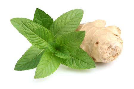 ginger health: Mint with ginger in closeup