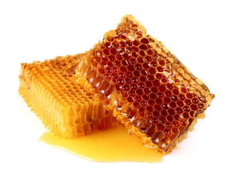 Fresh honeycombs on a white background Stock Photo - 15819759