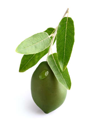 Green olive on a white background photo