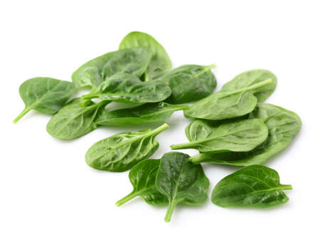 baby spinach: Leaves of spinach