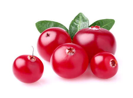 Beauty cranberry with leaves photo