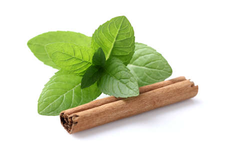 cannelle: Mint with cannelle Stock Photo