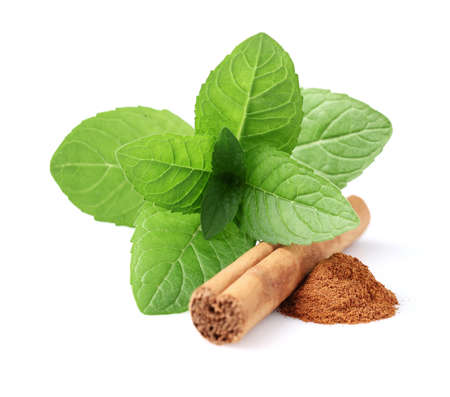 cannelle: Mint with cinnamon Stock Photo