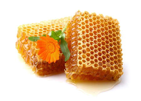 Honeycomb with marigold