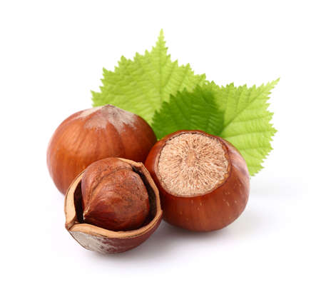 nutshells: Hazelnuts with leaves