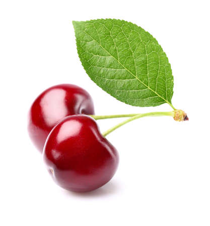 cherries isolated: Juicy cherries with leaf