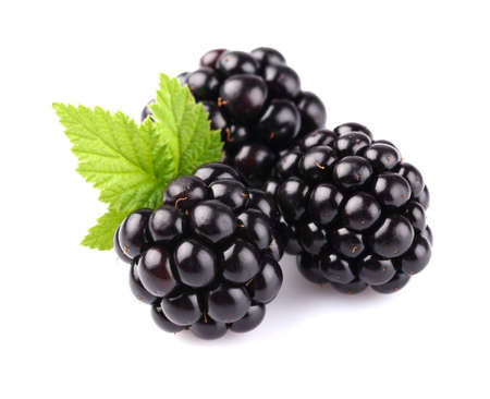 blackberry fruit: Blackberry with leaf