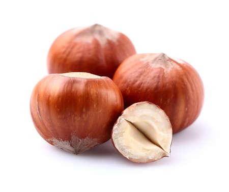 hazelnuts: Hazelnuts