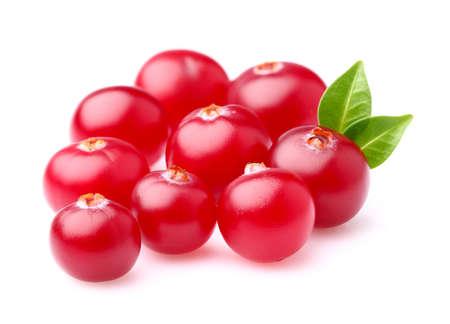 cranberry: Fresh cranberry Stock Photo