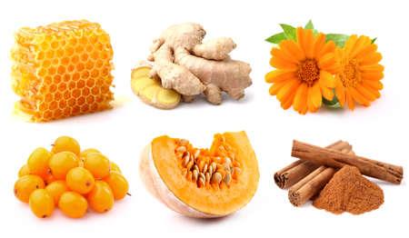 honey cell: Autumn harvest Stock Photo