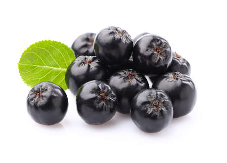 Chokeberry in close-up Stockfoto