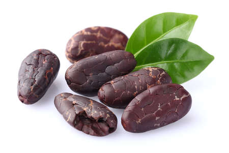 cacao: Cacao beans with leaves