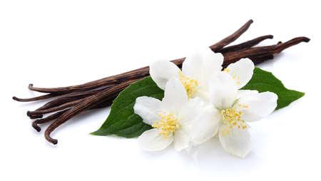 flor de vainilla: Jasmine con vainilla