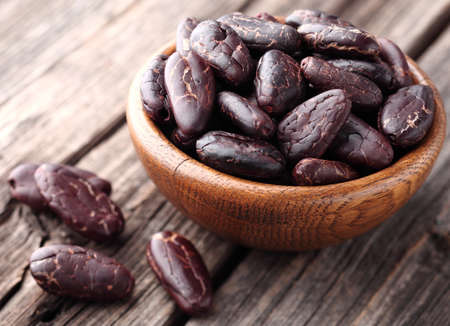 organic plants: Cacao beans Stock Photo
