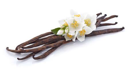 vainilla flor: Vainilla con el jazmín