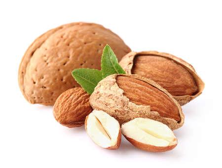 kernel: Almond kernel Stock Photo