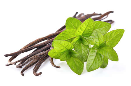 green bean: Mint with vanilla