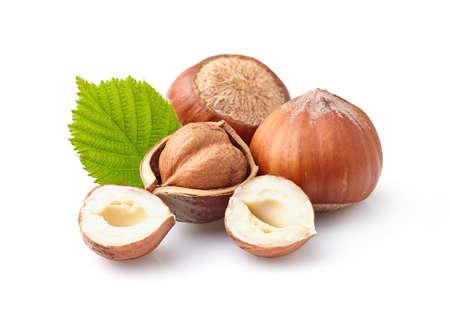 Filbert nuts Zdjęcie Seryjne - 40897905