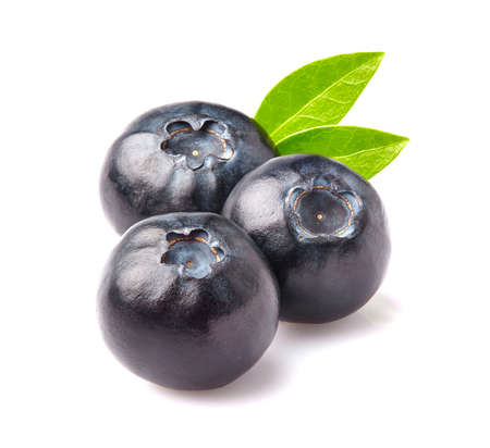 blueberries: Blueberry in closeup