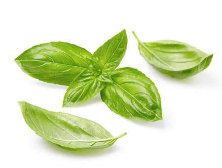 basils: Fresh basil